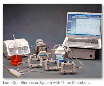 Lumegen體外血管生物力學實驗系統